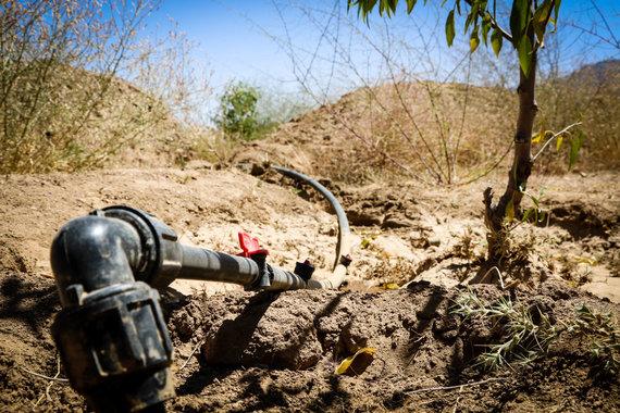 Pauliaus Ramanausko/15min nuotr./Nauja sistema afganistaniečių ūkiuose žemę drėkina po lašelį