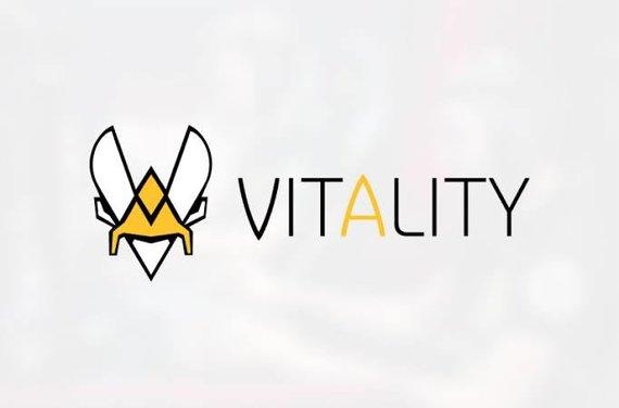 """""""Team Vitality"""""""