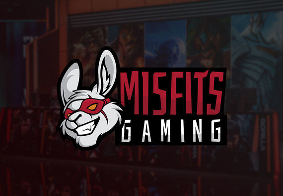 """Misfits Gaming"""