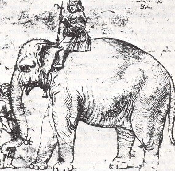 Wikiart.com nuotr./Raphaelio pieštas popiežiaus dramblys Hanno