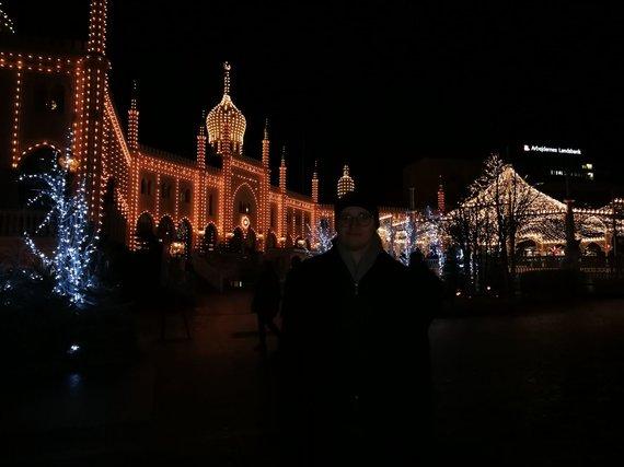 Ilmos Vienažindytės nuotr. /Tivoli parkas naktį