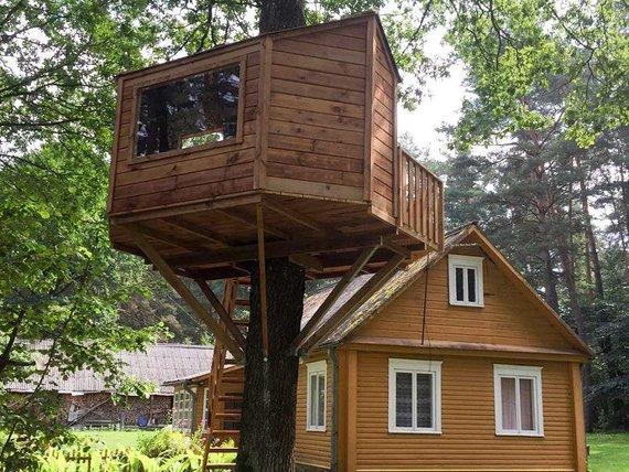 """""""Namas medyje"""" nuotr./Medžiuose įrengti nameliai"""
