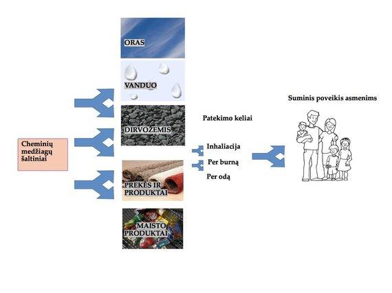 R.Aldonytės/L.Strumylaitės iliustr./Cheminių medžiagų patekimo į žmogaus organizmą keliai: cheminės medžiagos iš oro, dirvožemio, vandens, maisto ir kitų žmogaus naudojamų produktų per odą, virškinimo traktą ir plaučius patenka į žmogaus organizmą, kur gali kauptis.