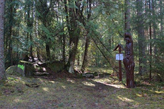 Mildos Juchnevičiūtės nuotr./Pilsudskio medžioklės pamatų liekanos Rūdininkų girioje