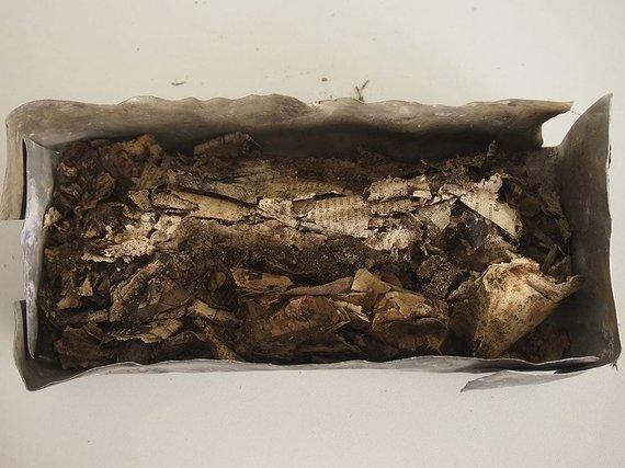 """LYA / """"Literatūras ir menas"""" nuotr./2014 m. lapkričio 5 d. Daugėliškių miške (Raseinių r., Ariogalos sen.) Ariogalos gimnazijos jaunųjų šaulių rastas konteineris su Prisikėlimo apygardos dokumentais"""