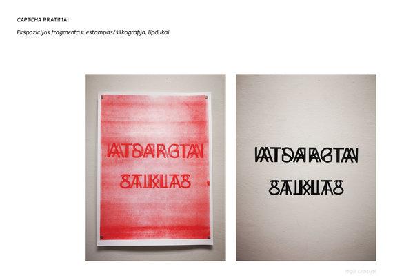 Organizatorių nuotr./Miglė Ceinorytė. CAPTCHA pratimai