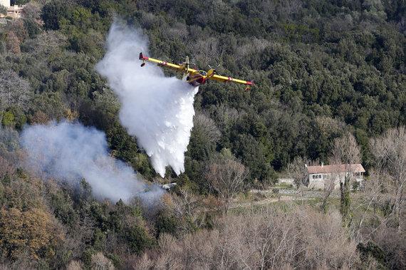 """AFP/""""Scanpix"""" nuotr./Ugniagesių lėktuvas Korsikos saloje"""