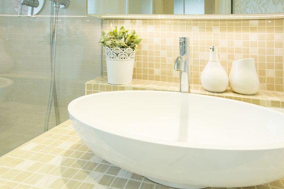 123RF.com nuotr./Vonios interjeras