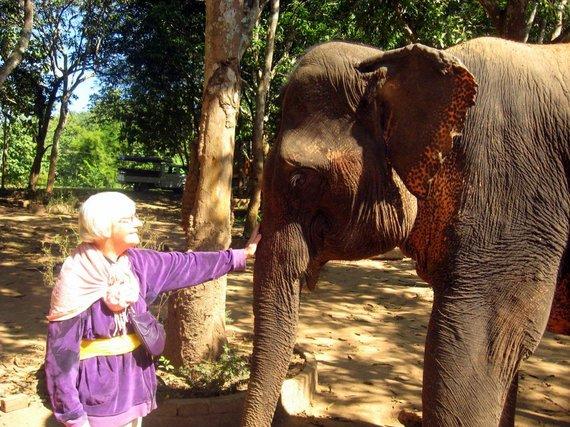 Asmeninio arch. nuotr./Dalia Montvilienė Vietname 2014 m.