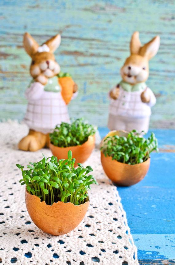 123RF.com nuotr./Žaliuojantys kiaušiniai