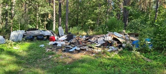 """VMU nuotr./Lietuvoje pirmąkart rengiama akcija """"Miško kuopa"""": miškininkai kviečia kartu tvarkyti miškus"""