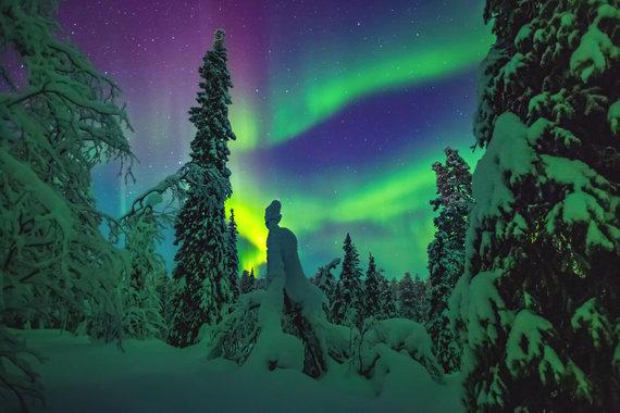 123RF.com nuotr./Šiaurės pašvaistė Laplandijoje