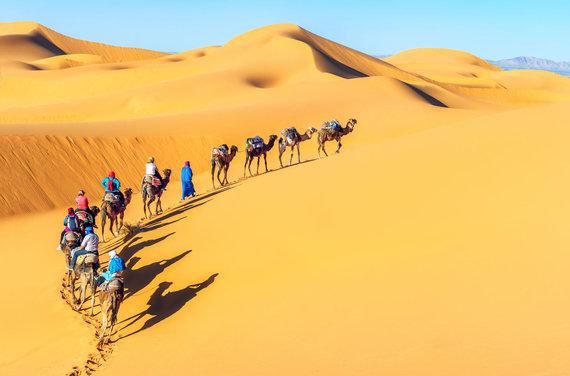 """Kelionių organizatoriaus """"GRŪDA"""" nuotr. /Dykuma Maroke"""