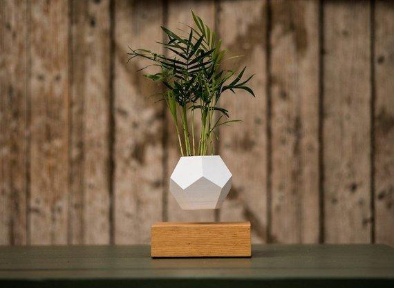 """Salono """"DESIGN+"""" nuotrauka/Levituojantis vazonėlis, gamintojas """"Lyfe"""""""