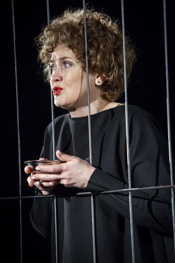 NKDT nuotr. /Aktorė Daiva Rudokaitė ir jos sukurti vaidmenys