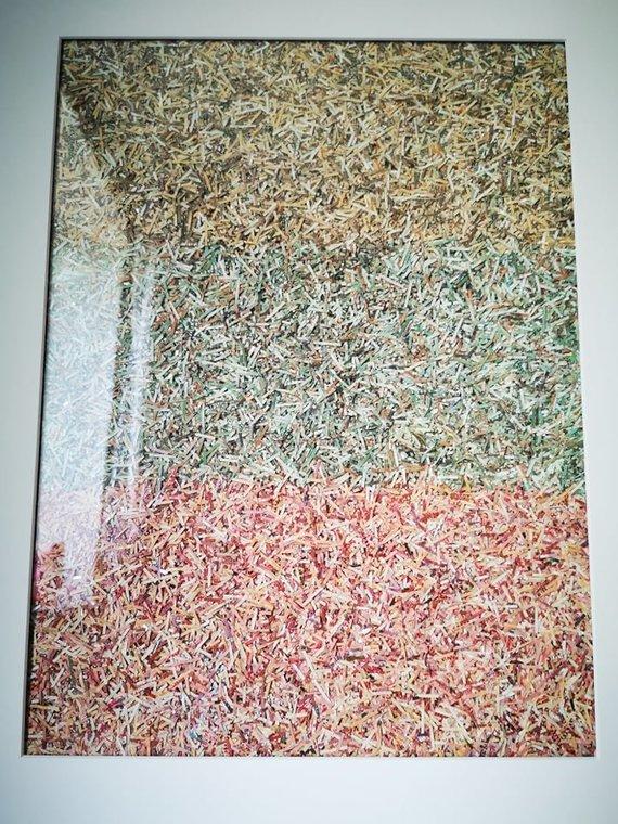 Asmeninio archyvo nuotr. /Sunaikinta valiuta – litai – tapo paveikslais. Juos kuria Jonu Litu prisistatantis vilnietis.