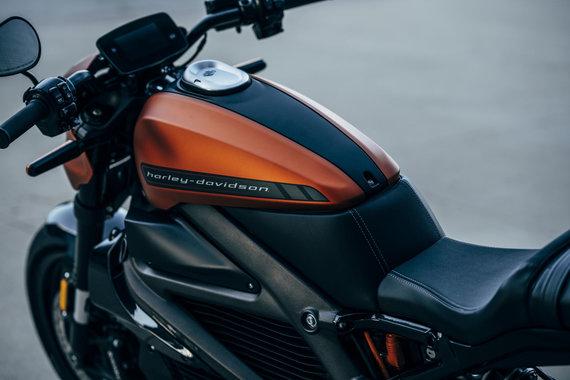 "Gamintojo nuotr./""Harley-Davidson LiveWire"""