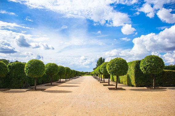 123RF.com nuotr./Rundalės parkas, Latvija