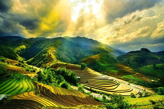 Shutterstock nuotr./Mu Cang Chai regiono ryžių terasos, Vietnamas
