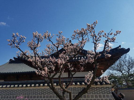 Leidėjų nuotr./Senasis Seulas – taip miestas atrodė XIX amžiuje