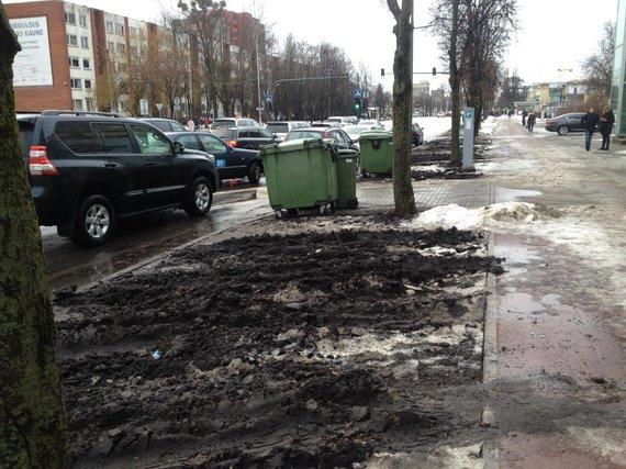 15min skaitytojo nuotr./Sunaikinta žalioji zona Kauno Savanorių prospekte