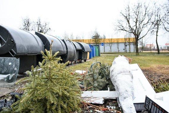 Rimvydo Ančerevičiaus nuotr./Nupuoštos žaliaskarės – geriau žirgams negu į atliekas