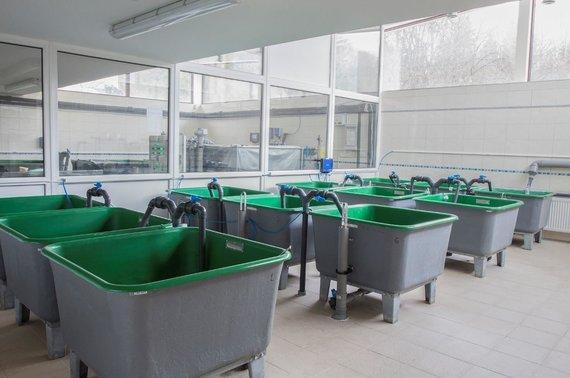Eksperimentinės sistemos Gamtos tyrimų centre.