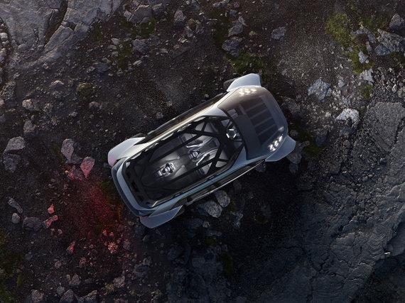 """Gamintojo nuotr./""""Audi AI:TRAIL quattro"""""""