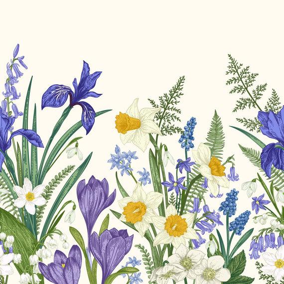 123RF.com nuotr./Vilkdalgiai, narcizai ir kitos gėlės