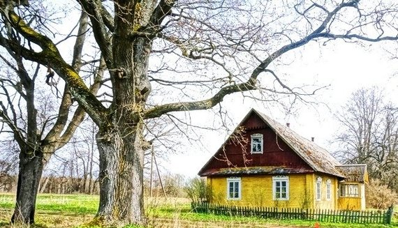 Namude.lt nuotr./Autentiška sodyba Ignalinos rajone, Bobėnų kaime, 12 000 eur