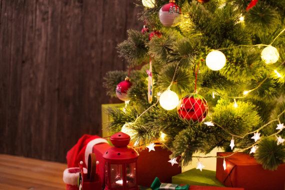 Fotolia nuotr./Kalėdinė eglutė