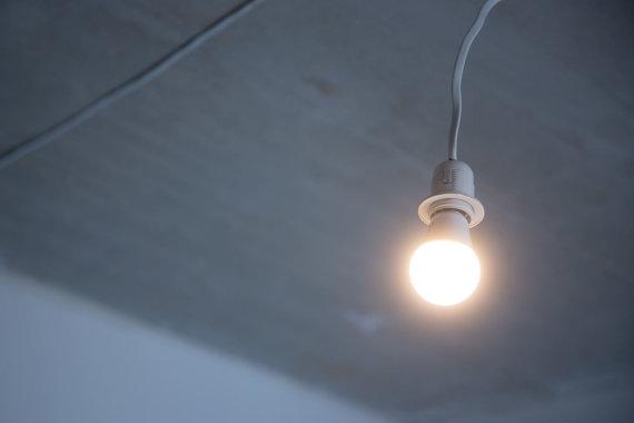 Žygimanto Gedvilos / 15min nuotr./Elektros lemputė