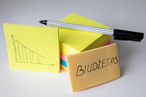 Juliaus Kalinsko / 15min nuotr./Biudžetas