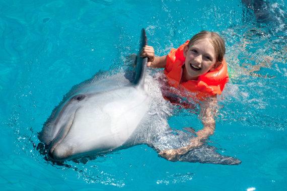 """""""Fotolia"""" nuotr./Mergaitė žaidžia su delfinu"""