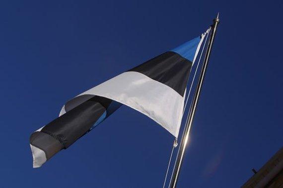 Photos.com nuotr./Estijos vėliava