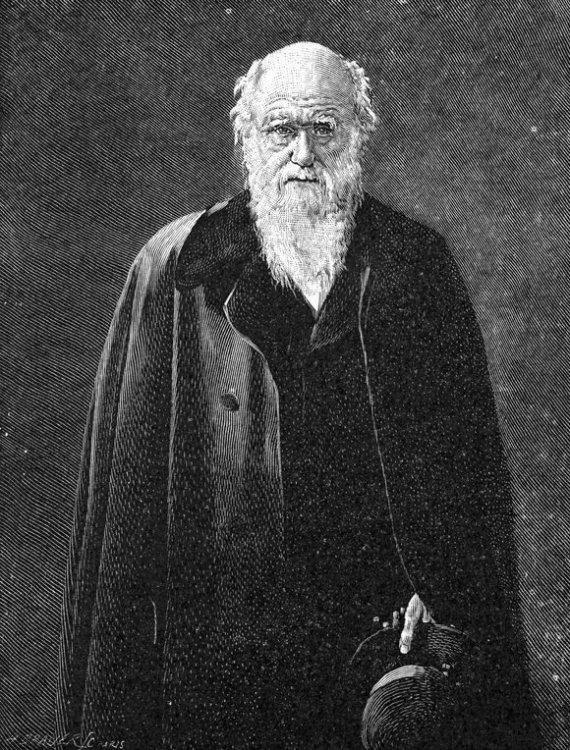 """Scanpix"" nuotr./Charlesas Darwinas"