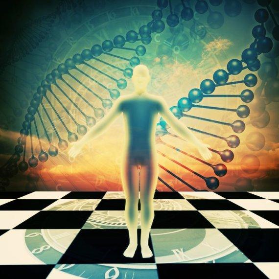 123rf.com nuotr./Žmogaus evoliucija