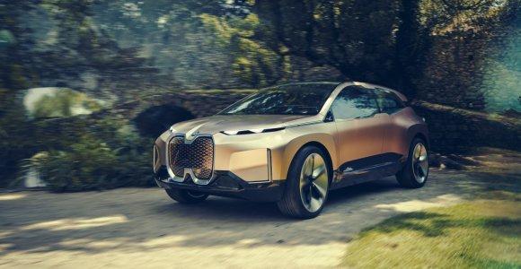 """Kodėl Vokietijos ministrui """"Tesla"""" seksualesnė už vokiškus elektromobilius?"""