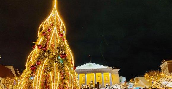 Vilnius pradeda Kalėdas: pirmoji sužibo eglė Rotušės aikštėje