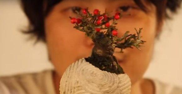 Japonijos mokslininkai sukūrė platformą, sukeliančią augalų levitaciją