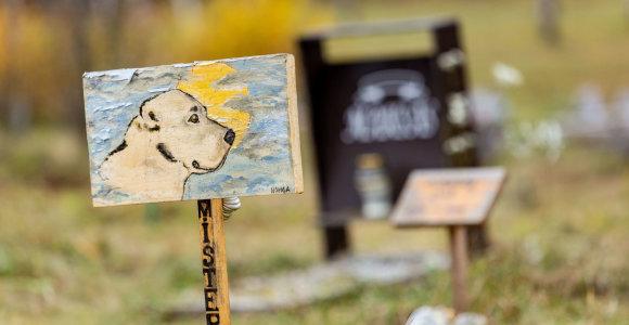 Panevėžiečiai galės civilizuotai atsisveikinti su augintiniais: įrengs gyvūnų kapines