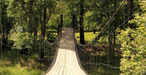 Nustebinusi vieta Lietuvoje: stovyklavietė – kaip dvaro parkas, į pažintinį taką veda kabantys tiltai