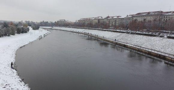 Žvejai nugulė Nemuno salos krantus: apie žvejybą Kauno centre – iš meškeriotojo lūpų