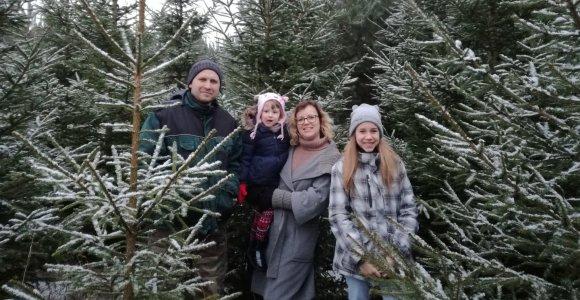 Tėvų sodintas miškas džiugins kelias šeimos kartas