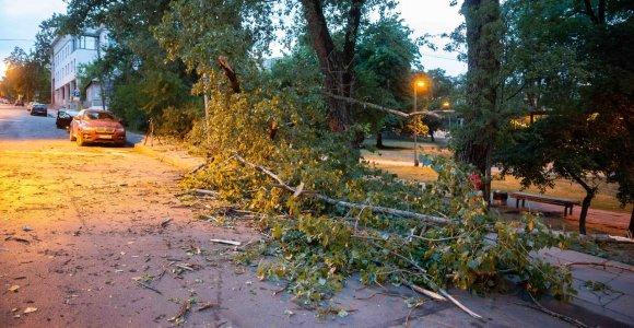 Dėl audros dingusi elektra atkurta beveik visiems gyventojams