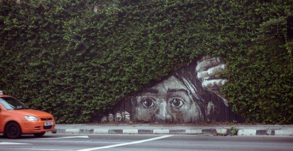 Gatvės menininko Ernesto Zacharevičiaus darbai
