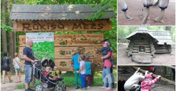Tervetės miško pasaka, dėl kurios į Latviją plūsta lietuviai
