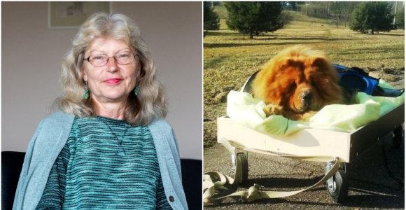 Internautus pakerėjusi psichoterapeutės atjauta neįgaliam šuniui: pokalbis apie tai, kas yra laimė