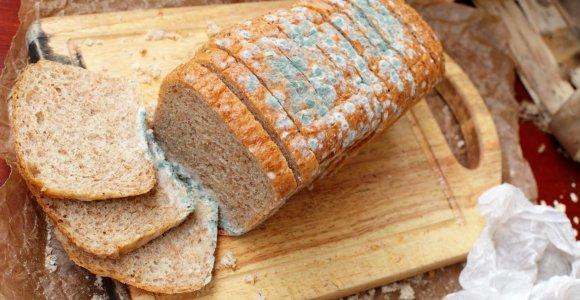 """Pelėsis ant duonos: ar dar galima valgyti nupjovus """"pūkuotą"""" dalį?"""