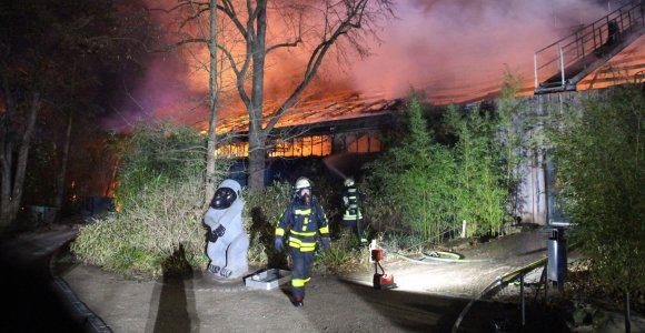 Vokietijoje Naujųjų metų sutikimo naktį gaisras zoologijos sode pražudė per 30 gyvūnų